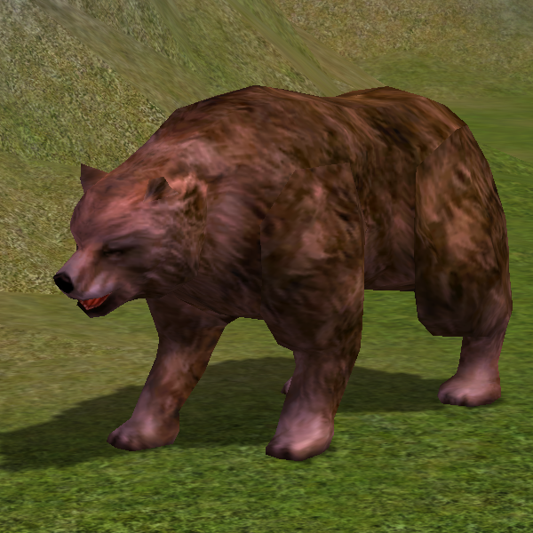 Orso Maledetto.png