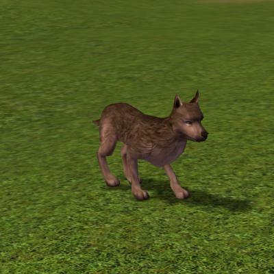 Animali Metin2wiki